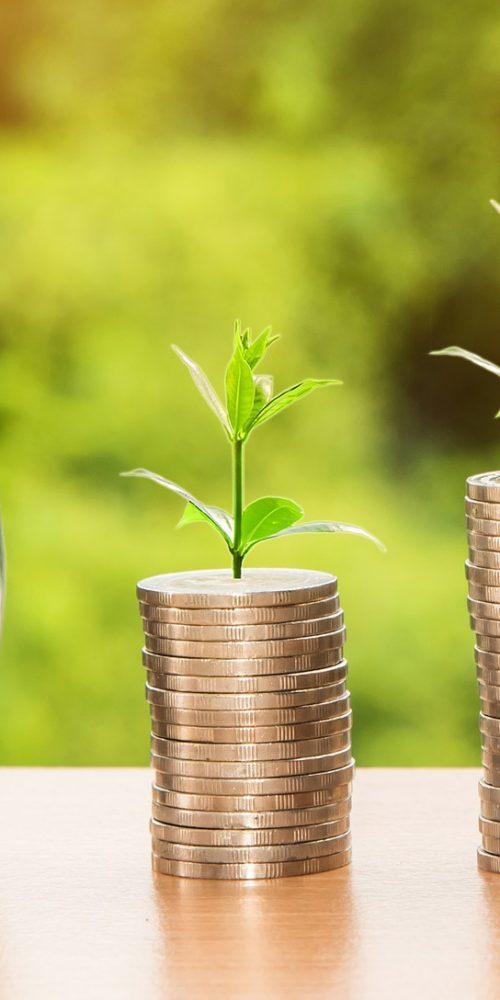 geld inkomen groei zzp
